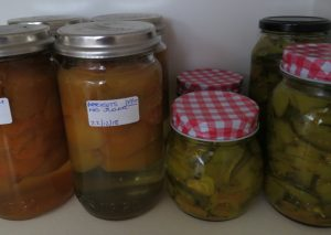 Jars of preserved food on shelf